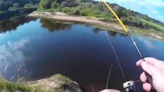 Со спиннингом по реке Луга.