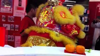Novel yewtee lion dance