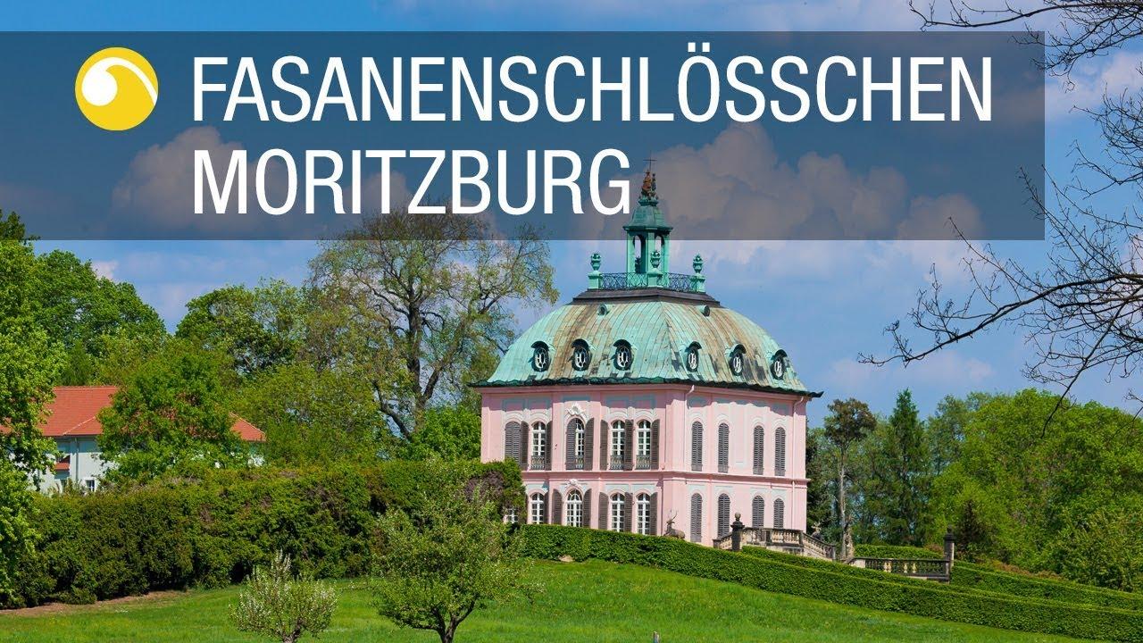 Fasanenschlösschen Moritzburg | Schlösserland Sachsen