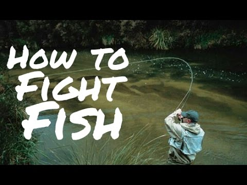 How To Fight And Land A Fish - BEST Techniques