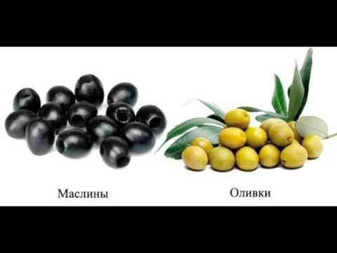 Оливки или маслины? #факт