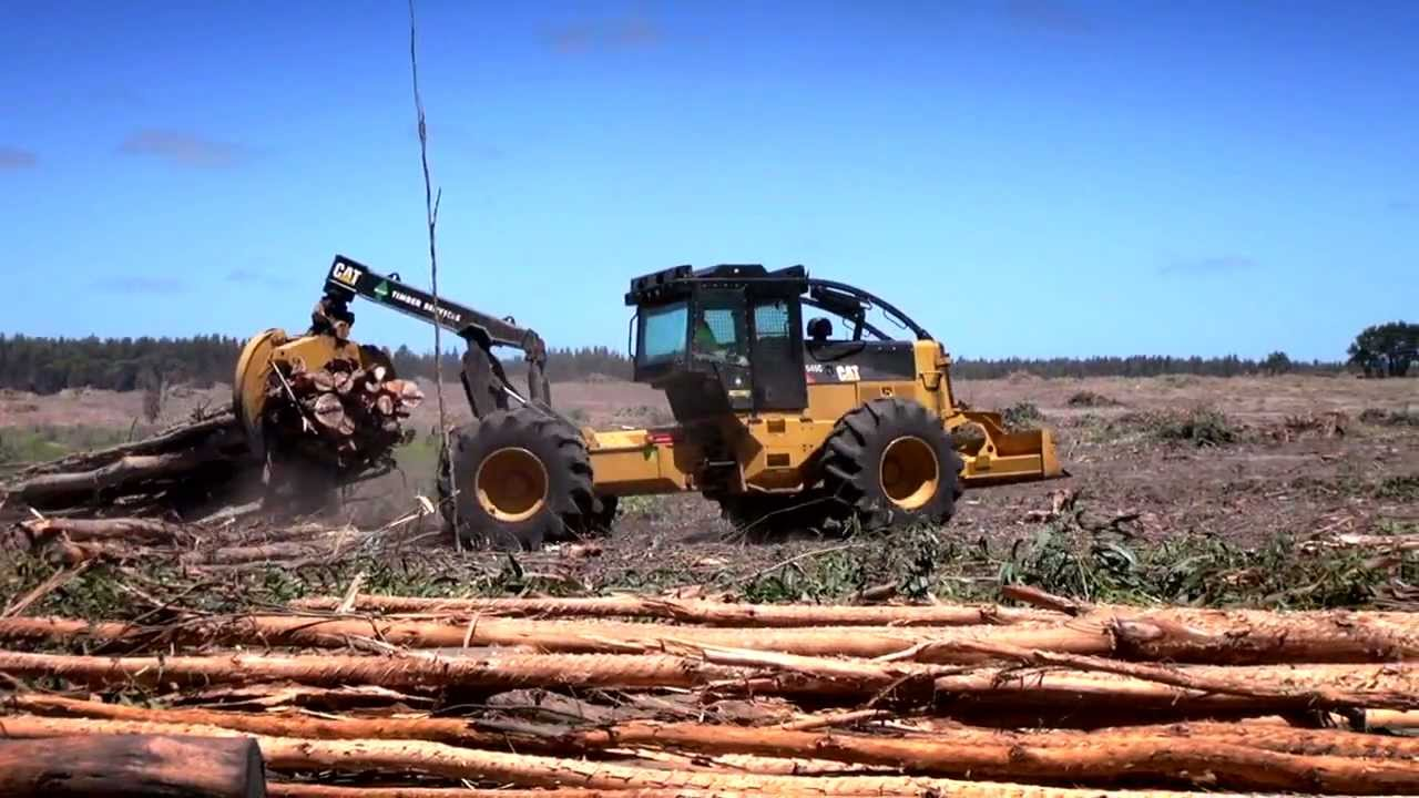 Cat   Logging Equipment   Forestry Equipment   Caterpillar   Cat Forestry Equipment