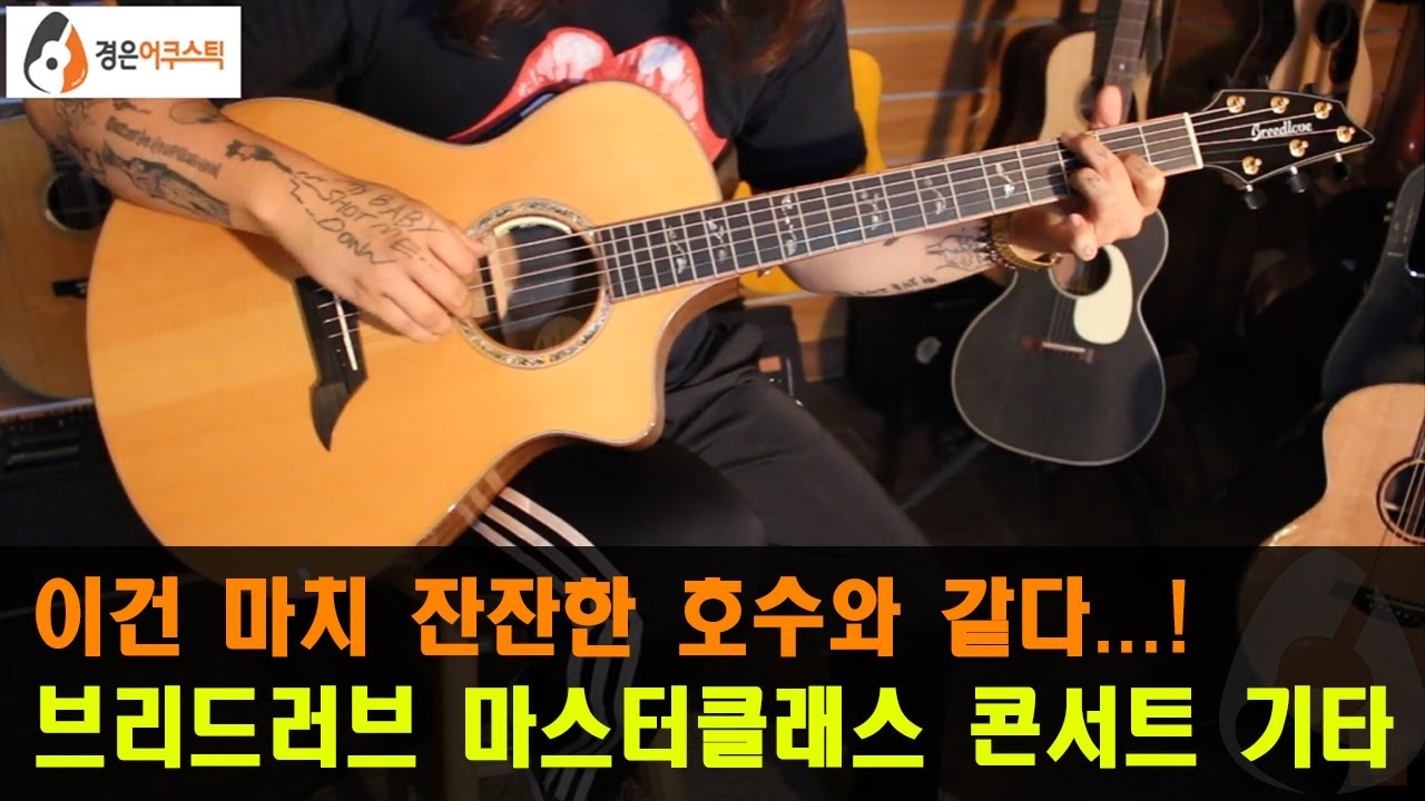 [브리드러브기타] 브리드러브 마스터클래스 콘서트 기타 리뷰 (Breedlove Masterclass Concert Guitar Review)