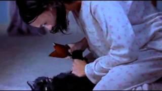 Scary Movie 2   Cindy VS Black Cat