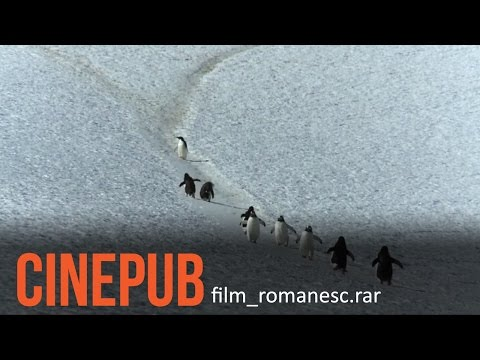 Exploratorul | The Explorer | Documentary Film [ENG.SUB] | CINEPUB