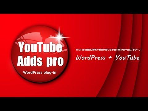 WordPressプラグイン「YouTube Adds pro」機能説明ダイジェスト