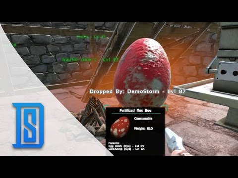 Ark Survival Evolved -Northern Tribe - Trying to hatch a Baby Rex