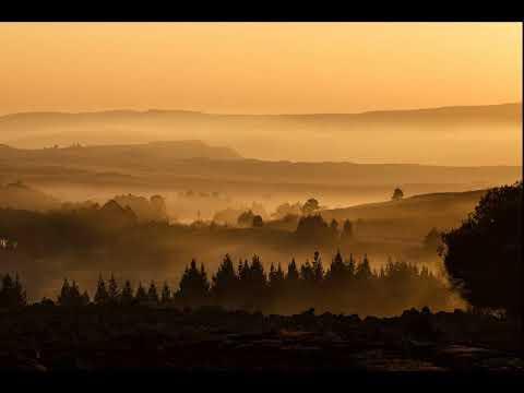 """Anton Bruckner - Symphony No. 4 """"Romantic"""" - Herbert Blomstedt - Wiener Philharmoniker (live 2017)"""