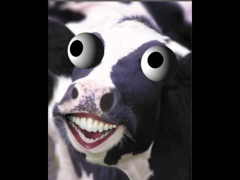 Watch out for Mad Cow disease in Crazy Cows slot