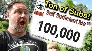 Ton of Live Subs Count 100k Self Sufficient Me