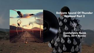 Pink Floyd - Comfortably Numb (Live, Delicate Sound Of Thunder) [2019 Remix]