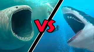 Megalodon VS Bloop – (Who Would Win?)