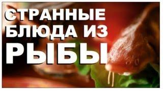 Галилео. Странные блюда из рыбы