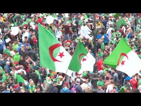 الجزائر.. تظاهرات حاشدة للأسبوع التاسع للمطالبة برحيل رموز نظام بوتفليقة  - نشر قبل 6 ساعة