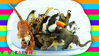 Wild Animals Names for Children to Learn Colors with Animal Toys