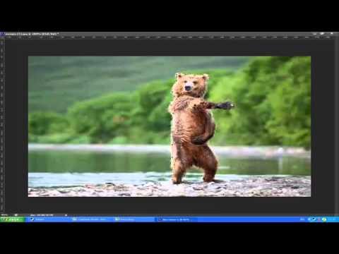 Уроки Photoshop cs6: Как вырезать картинку и вставить на другой фон?