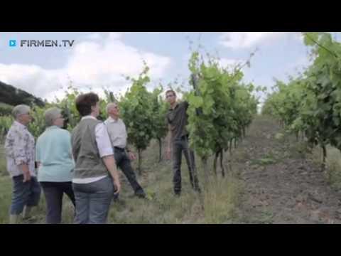 Weingut von der Tann in Iphofen - Winzer-Betrieb im Landkreis Kitzingen