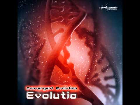 Convergent Evolution - Journey To The Roots [Evolutio]