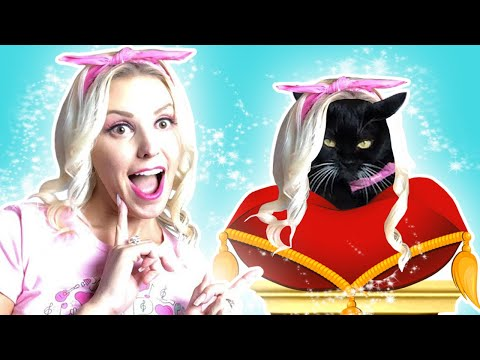Totally TV Jenn Barlow LIVE Chat and Cat Tricks