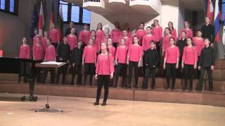 Kinderchor Goethegymnasium Demmin Lion sleeps tonight 2014