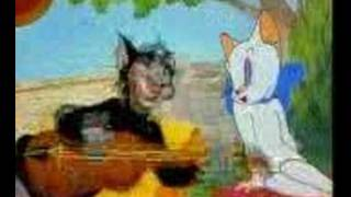 şarkı söyleyen  kedi