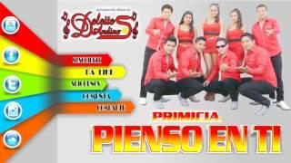 PIENSO EN TI - DELEITES ANDINOS | Audio Oficial