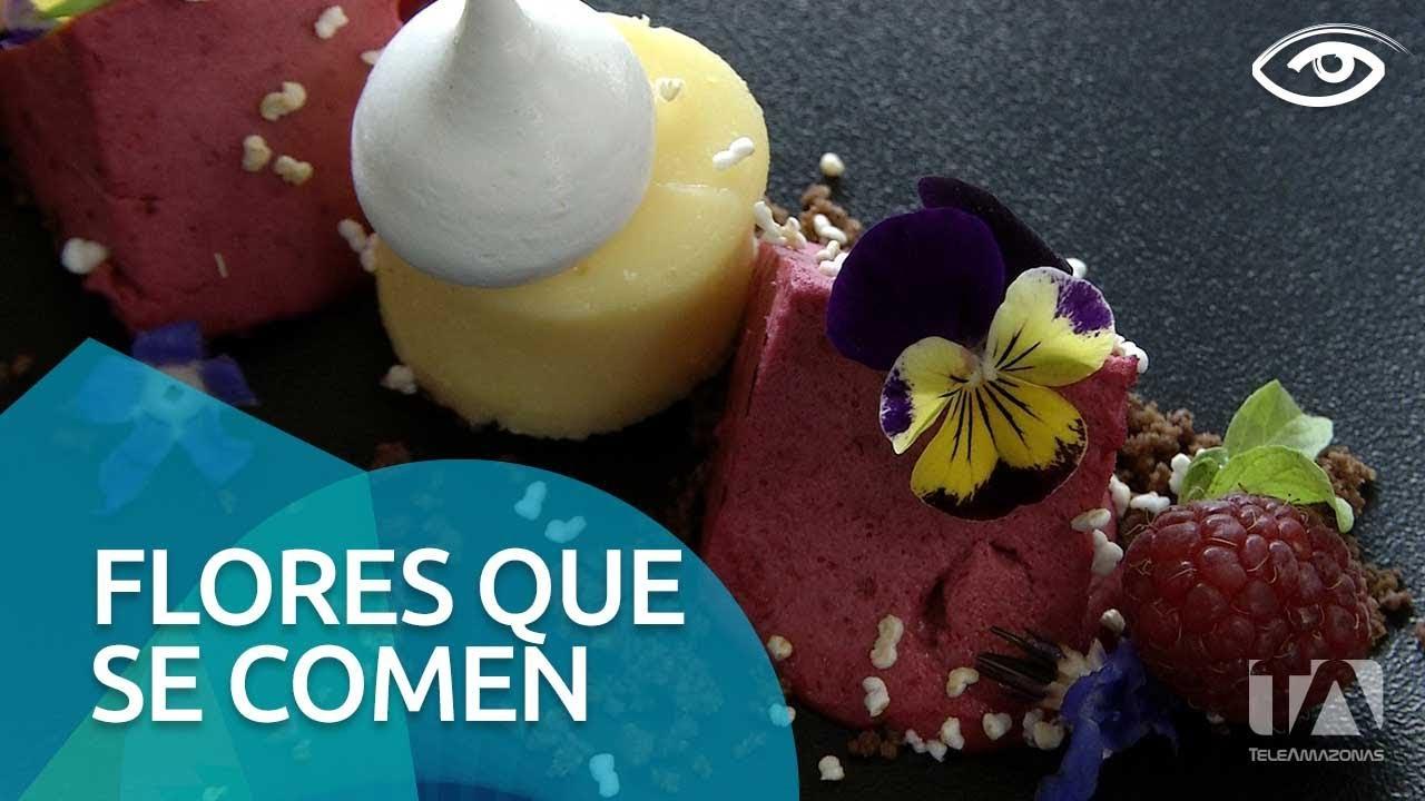 Flores Que Se Comen Dia A Dia Teleamazonas Youtube