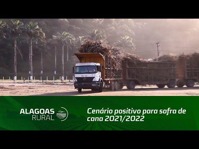 Sindaçúcar Alagoas vê cenário positivo para preços na safra de cana 2021/2022
