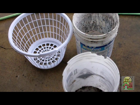 Buckets - Baskets - Grow Bags: Container Gardening on the Cheap!