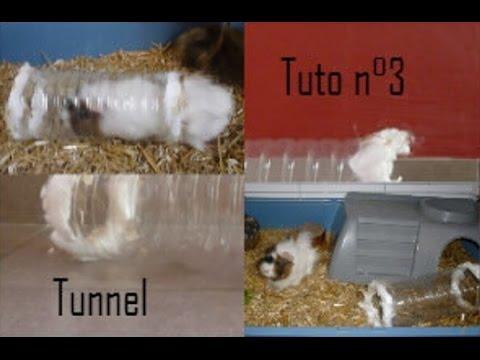 Tuto n 3 fabriquer un tunnel pour son rongeur missrongeur youtube - Fabriquer une desserte pour plancha ...