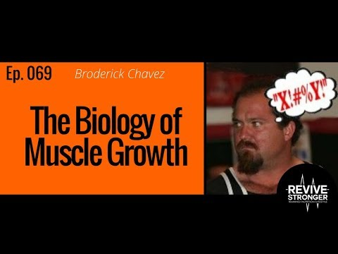 069: Broderick Chavez - The Biology of Muscle Growth