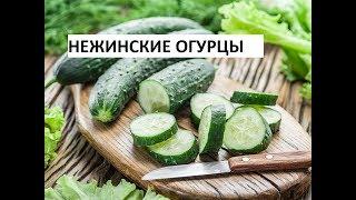 Салат Нежинский ( Огурцы). Вкусный Способ Переработки Перезрелых Огурцов