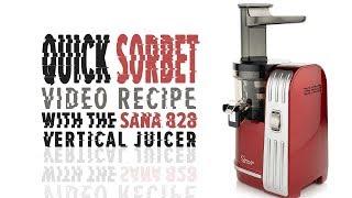Sana 828 quick sorbet recipe