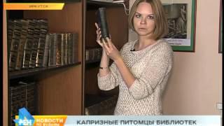 Старинные книги Иркутска: особенности хранения и реставрации(, 2015-05-08T05:17:53.000Z)