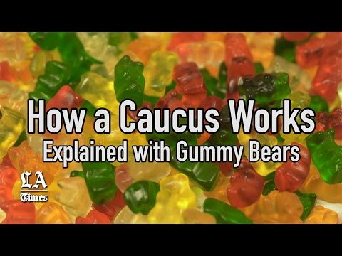 How a caucus works, as explained with gummy bears