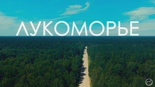 Лукоморье 2 или как я провёл лето в деревне  (Документальный фильм)