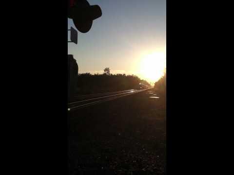 Train Rome ny