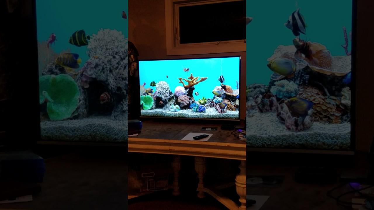Aquarium Screensaver on LG UHD 4K TV