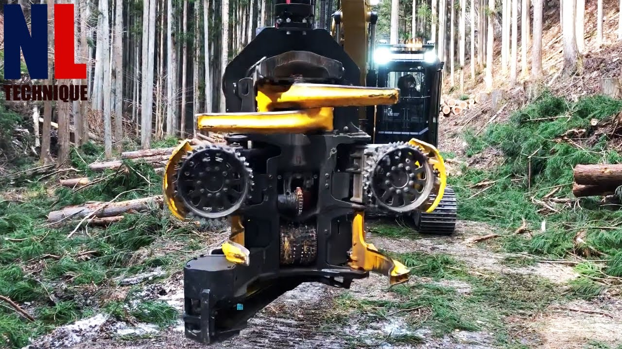 Cool and Powerful Forestry Machines That Are On Another Level ▶ 3
