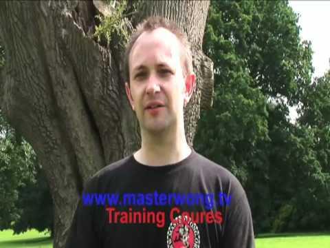 Download wing chun training 2