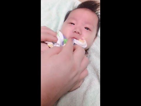신생아유산균