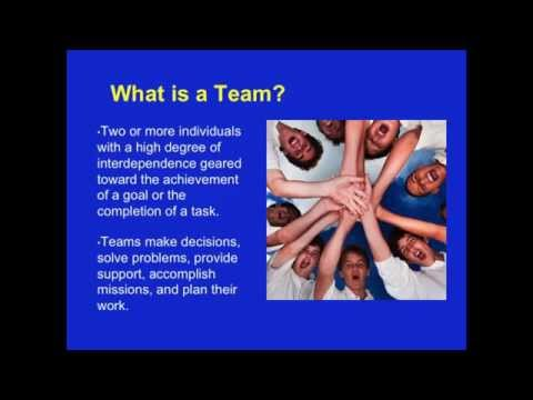 Patient Safety Webinar #10: Assessing and improving teamwork performance