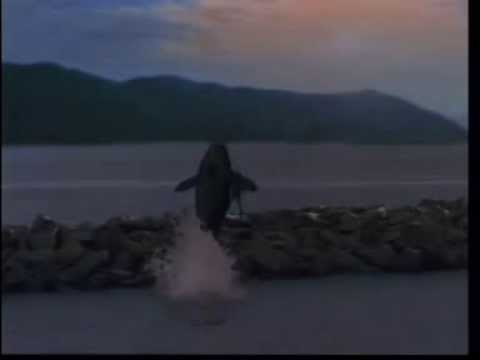 Michael Jackson Will You Be There - Free Willy