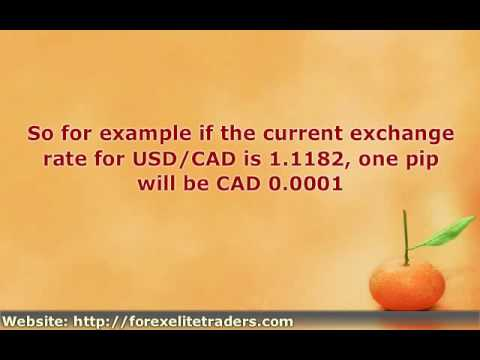What does forex pip stand for
