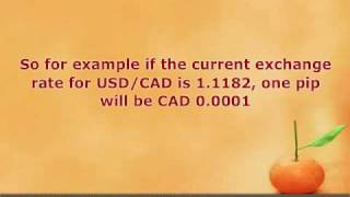 Forex Pips Explained