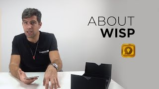 """Tutorial """"How to use IMPulse K1"""" Part 5 - About WISP 