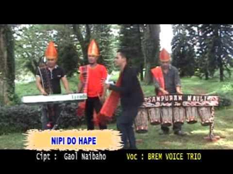 Brem Voice Trio Nipi Do Hape