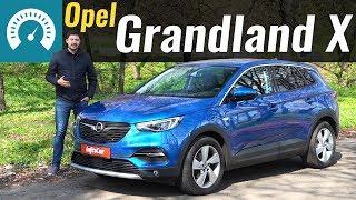 Opel Grandland X 2019 в Украине