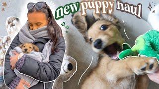 puppy haul // everything i got my new puppy! *essentials checklist*
