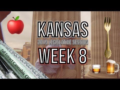 Week 8 Kansas Legislature Recap 2019: Boozy legislators, election perjury, a bill is law, and more.